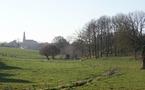 Les arbres dans les noms de lieux du canton de Mortagne-sur-Sèvre